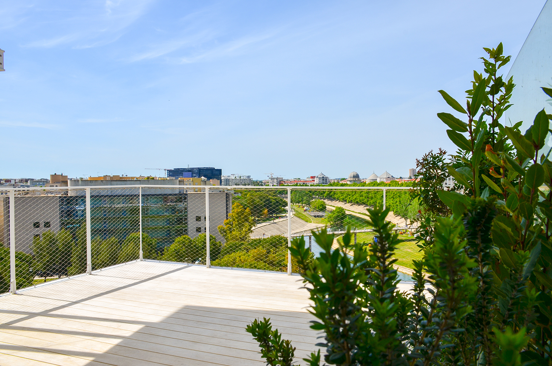 photo de l'arbre blanc - terrasse de Ludovic Liron local de la société LLCE LLZ