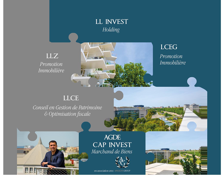 organisation holding LL